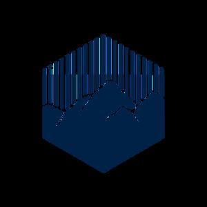 Avatar data
